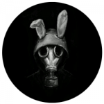 Rabbit Web APK For Android Latest Version Free Download